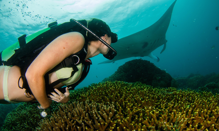 a girl scuba diving with a manta ray